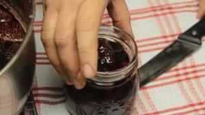 dulceata de capsuni borcan