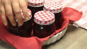 dulceata de capsuni borcane