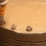Tort fara coacere cu biscuiti decor cu crema