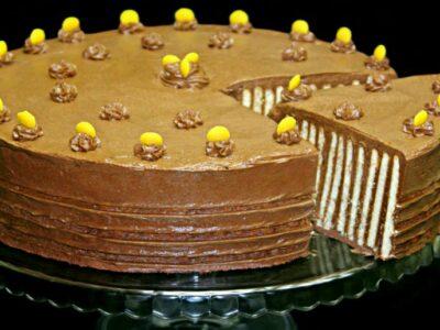 Tort fara coacere spirala de biscuiti tort fara coacere cu biscuiti