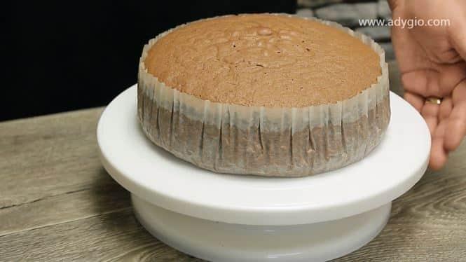 blat de tort cu cacao prezentare