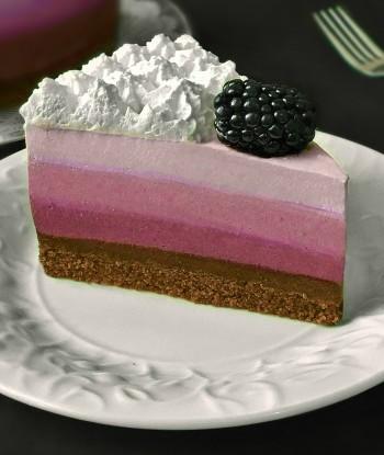 prajitura fara coacere in stil ombre o prajitura de vara cu biscuiti frisca si sos de mure sau alte fructe