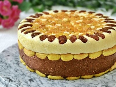 Tort fara coacere cu budinca si branza de vaci, tort fara coacere super cremos la oala adygio kitchen